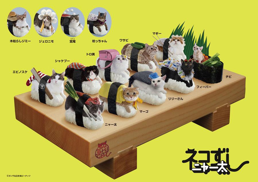 Chat sushi - neko sushi