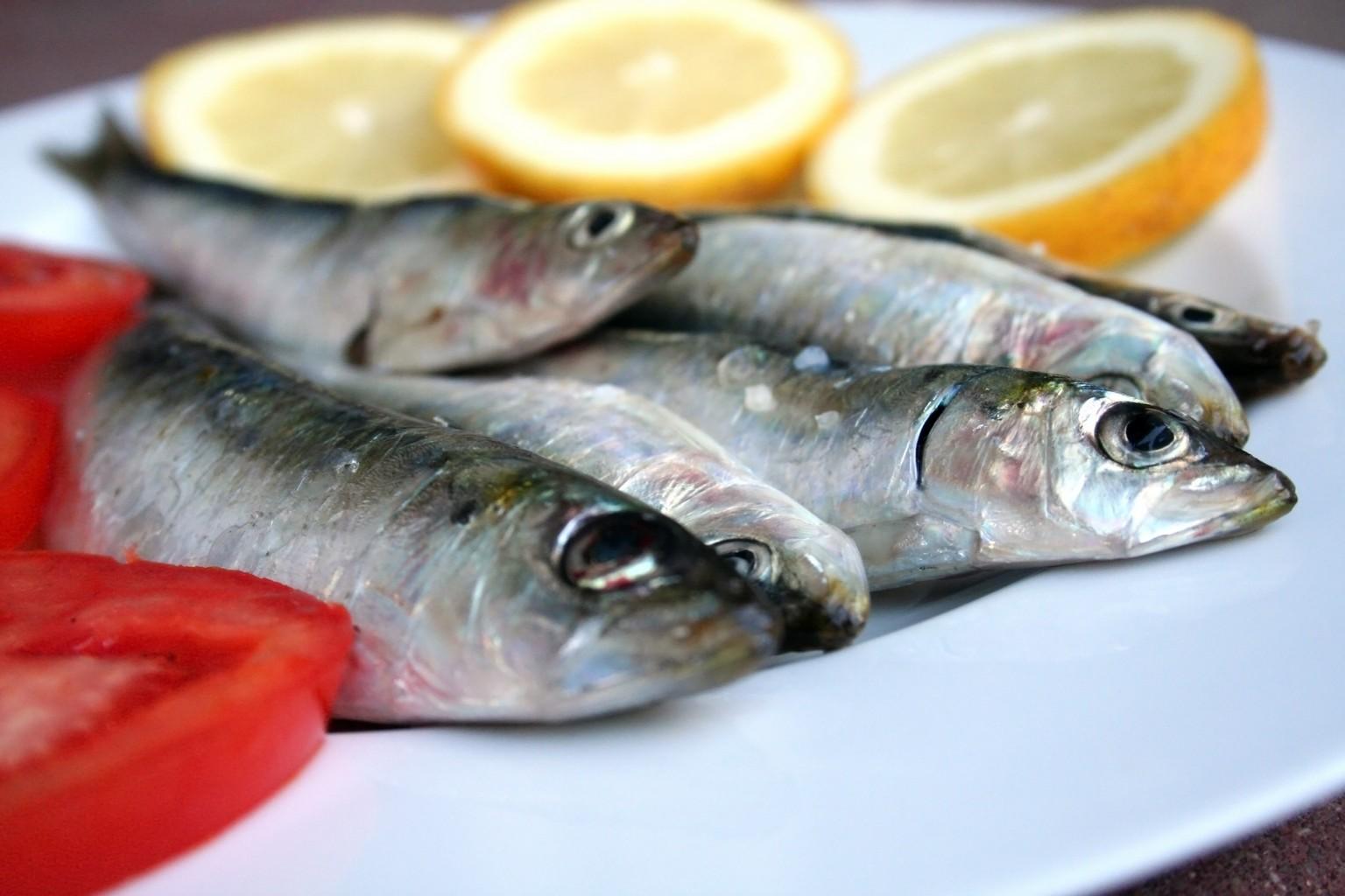 Sardine sushi