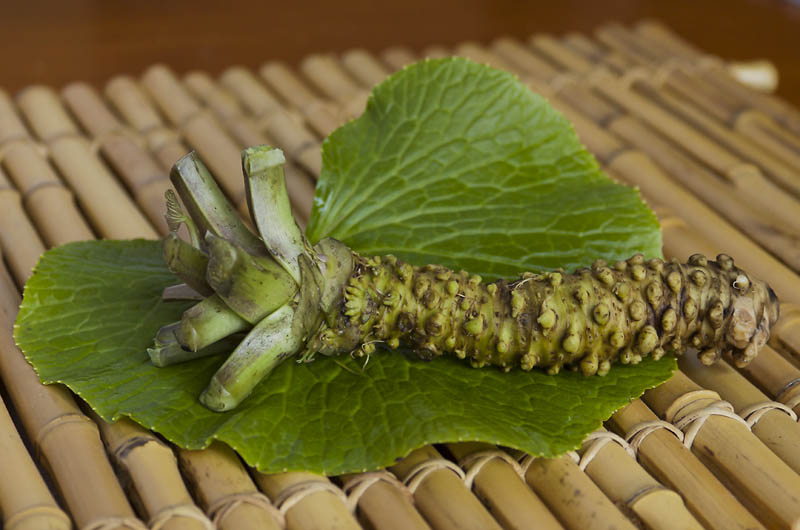 Le wasabi